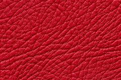 Red leather texture or background Stock Photos