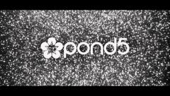 Black and White Particles Logo Reveal - stock after effects