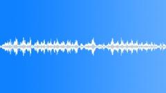 Grebe - sound effect