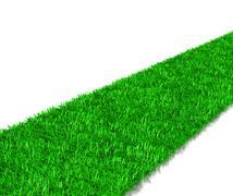 Green Grass Way 3D Illustration on White Background - stock illustration