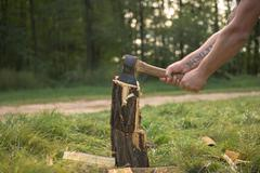 Firewood and old axe - stock photo