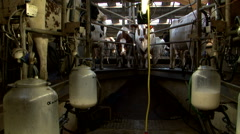 Milking machine in cowfarm milk making Stock Footage