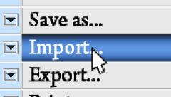 """Press button """"Import"""" in the menu Stock Footage"""