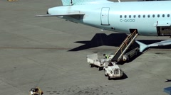 Focus of worker arranging of passenger luggage to Air Canada airplanes. - stock footage