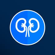 kidney icon isolated human two vein white medical - stock illustration