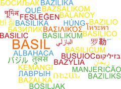 Basil multilanguage wordcloud background concept - stock illustration