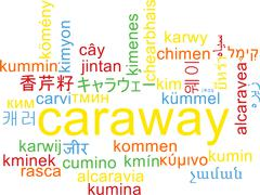 Caraway multilanguage wordcloud background concept - stock illustration