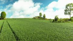 Beautiful aerial drone shot of a green field Stock Footage