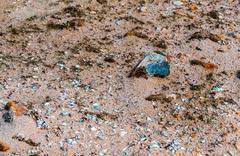 Sand and small coastal rocks on the beach Stock Photos