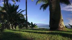 Hawaii, the big island towards MAUNA LOA Stock Footage
