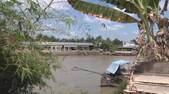River bank at The Mekong Delta, Vietnam Stock Footage