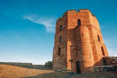 Tower Of Gediminas - Gedimino - In Vilnius, Lithuania. Historic Sy Kuvituskuvat