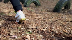 Quick start in the forest. Slow motion. Stock Footage