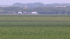 Crops growing in the Holland marsh area of Ontario Stock Footage