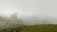 Morning field in fog - stock footage