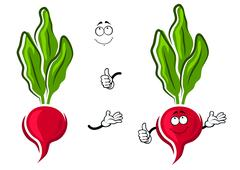 Cartoon pink radish vegetable character Stock Illustration