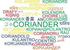 Stock Illustration of Coriander multilanguage wordcloud background concept