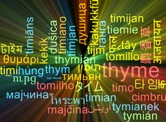 Thyme multilanguage wordcloud background concept glowing - stock illustration