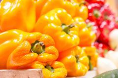 Yellow pepper capsicum Stock Photos