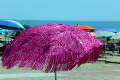 Fuchsia umbrella on the sunny beach in summer Stock Photos
