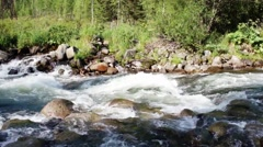 Forest Siberian mountain clean river. Siberia. Khakassia. Stock Footage