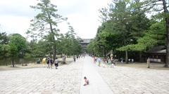 People walking on pathway in the garden at Todaiji Temple Stock Footage