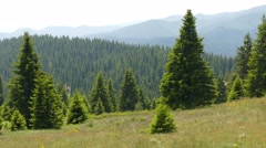 Rhodope Mountains in Bulgaria. Stock Footage
