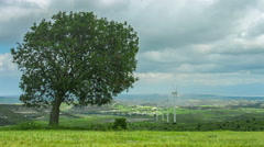 Tree growing on wind farm. Green energy. Environment protection, global warming - stock footage