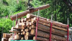 Timber industry, moving tree trunks to a truck for export. Stock Footage