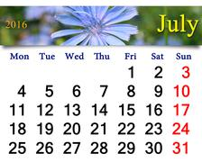 Calendar for July 2016 with flowers of Cichorium Stock Illustration