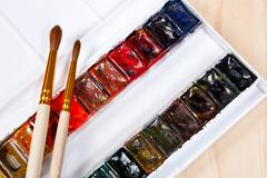 Professional watercolor paints in box with brushes. Stock Photos