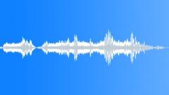 Animals_Bumble Bee_Bombus hypnorum_06 Sound Effect