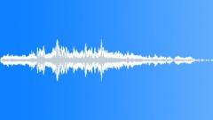 Animals_Bumble Bee_Bombus hypnorum_02 Sound Effect