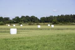 Wrapped Silage in Field - stock photo