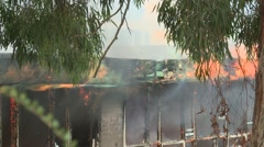 School Burns with gum tree Stock Footage