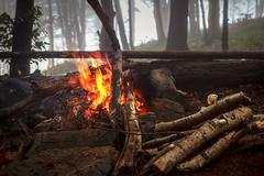 Fire in foggy wood - stock photo