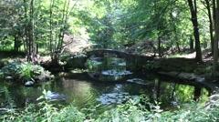 Bridge Over Water Garden Stock Footage