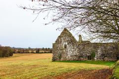 KILCREA, IRELAND - NOVEMBER 28: medieval Kilcrea Friary (Kilcrea Abbey) locat - stock photo