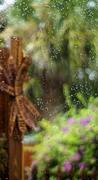 water on window colorful  florida garden - stock photo