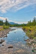 A peaceful creek in highwood meadows in Kananaskis, Alberta. Stock Photos