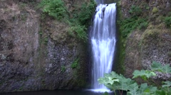 Multnomah Falls, Oregon from a distance with green trees. Time Lapse Stock Footage