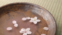 Cherry blossoms on water in a ceramic plate Stock Footage