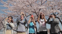 Multi-ethnic group taking pictures at hanami party in Tokyo - stock footage