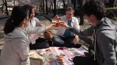Multi-ethnic group enjoying hanami party in Tokyo Stock Footage