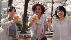 Multi-ethnic young women toasting during hanami party in Tokyo Stock Footage