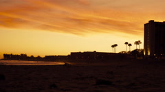 Dogs On Beach at Sunset Stock Footage