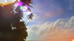 Sunny day on tropical beach with palm tree Stock Footage