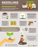 Seedling Infographics Set Stock Illustration