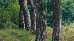 A man in military uniform patrolling in the forest Stock Footage