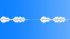 Great Kiskadee 1 - sound effect